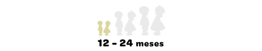 12-24 meses